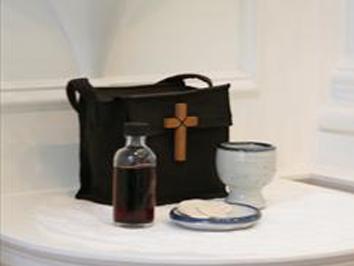 Eucharistic Visitor